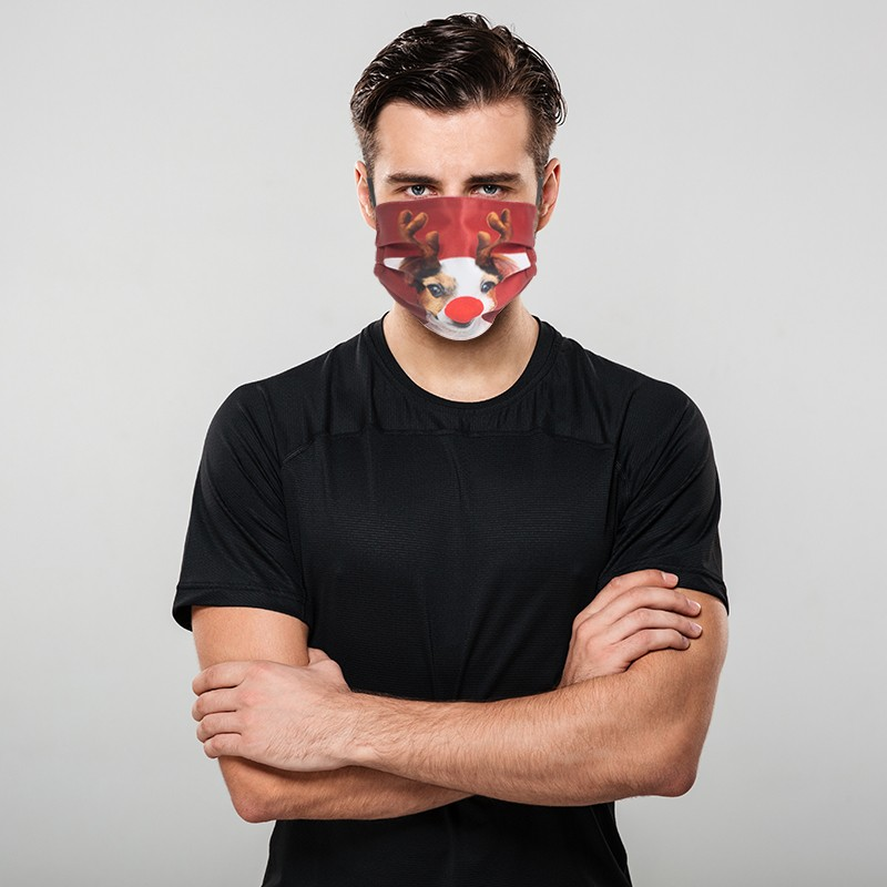 Christmas Double-Ply Pleated Face Mask